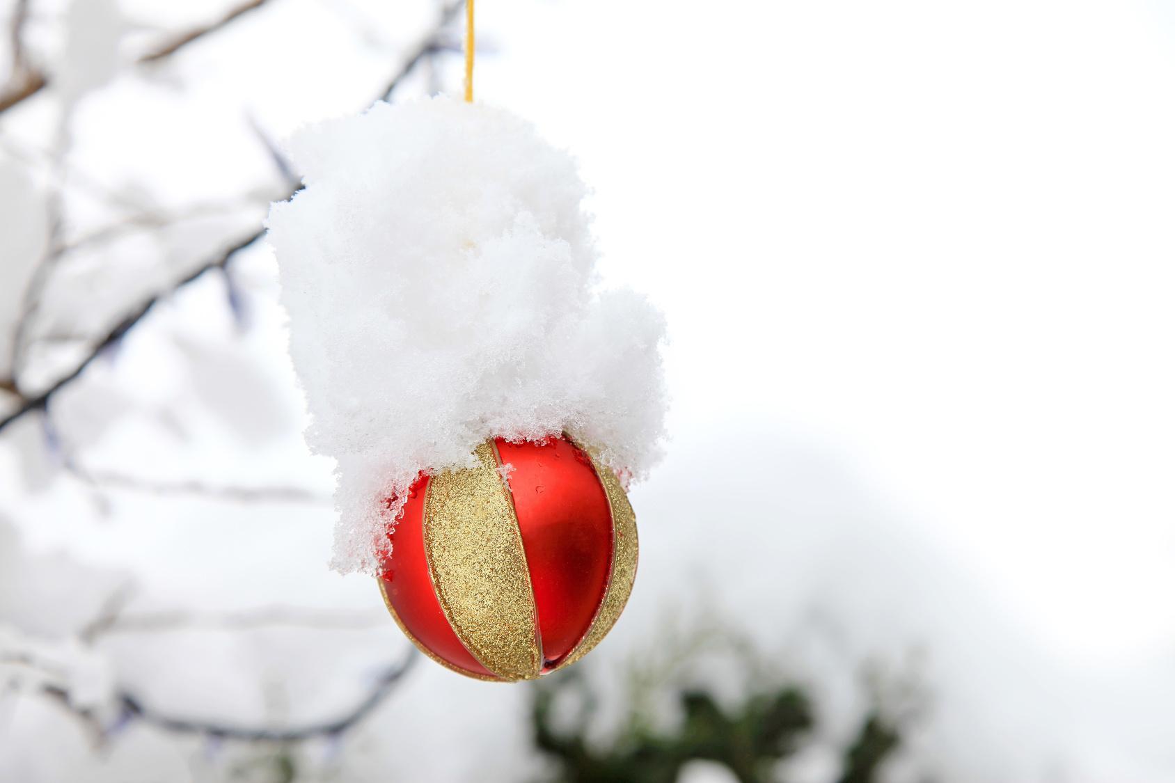 bola de navidad con nieve IMG_9217-f16